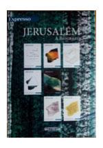Jerusalém : a biografia