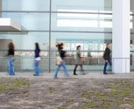 Programa de <i>Mentoring</i> de RPCE: inscrições a decorrer
